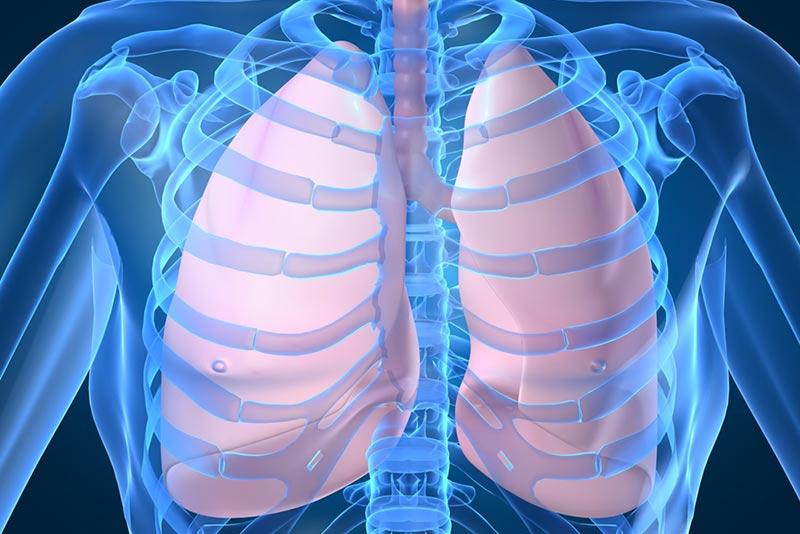 fisioTerapia-respira
